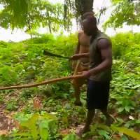 Koh Lanta 2016 : Steve tue un cobra, les autres candidats... le mangent !