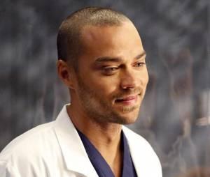 Grey's Anatomy saison 12 : Jesse Williams donne son avis sur le couple April/Jackson